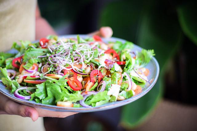 frisse salade raapstelen lima bonen kiemen