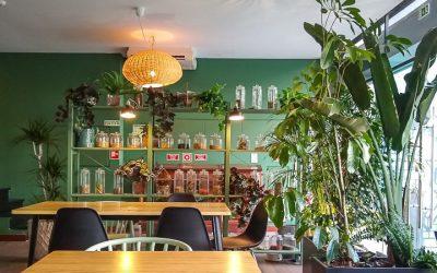 Uit eten in Lissabon? 10 gezonde restaurants