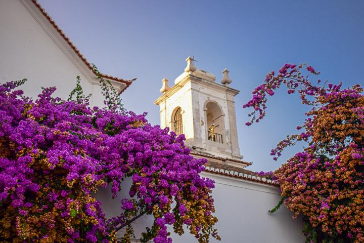 Lissabon bloemen