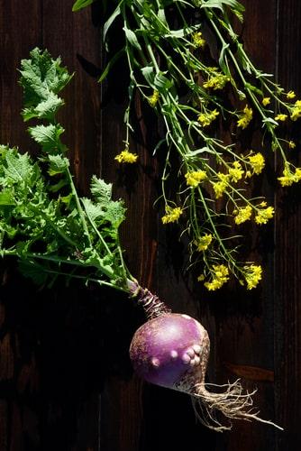 raapstelen mysterieuze Portugese vruchten en legumes