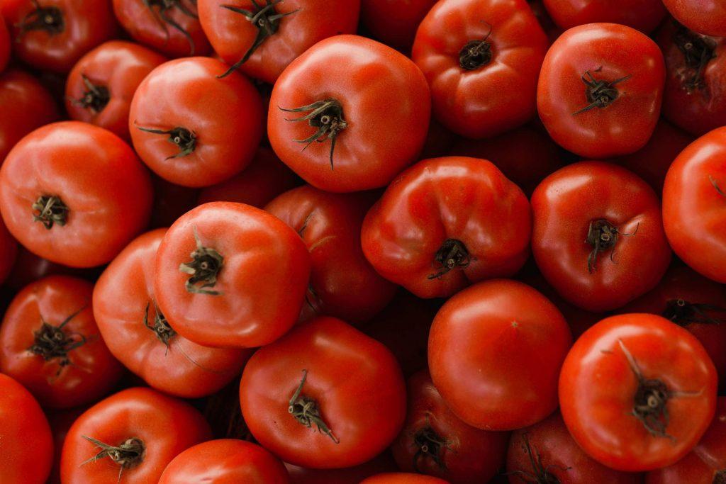 waarom zijn tomaten gezond tomaten recepten