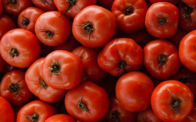 Waarom zijn tomaten gezond? (+ 10 recepten met tomaten)